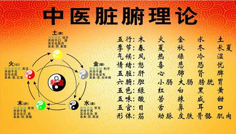 中医学的脏象学说